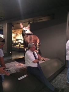 2017_sven_tode_kulturprogramm_zoologisches_museum5